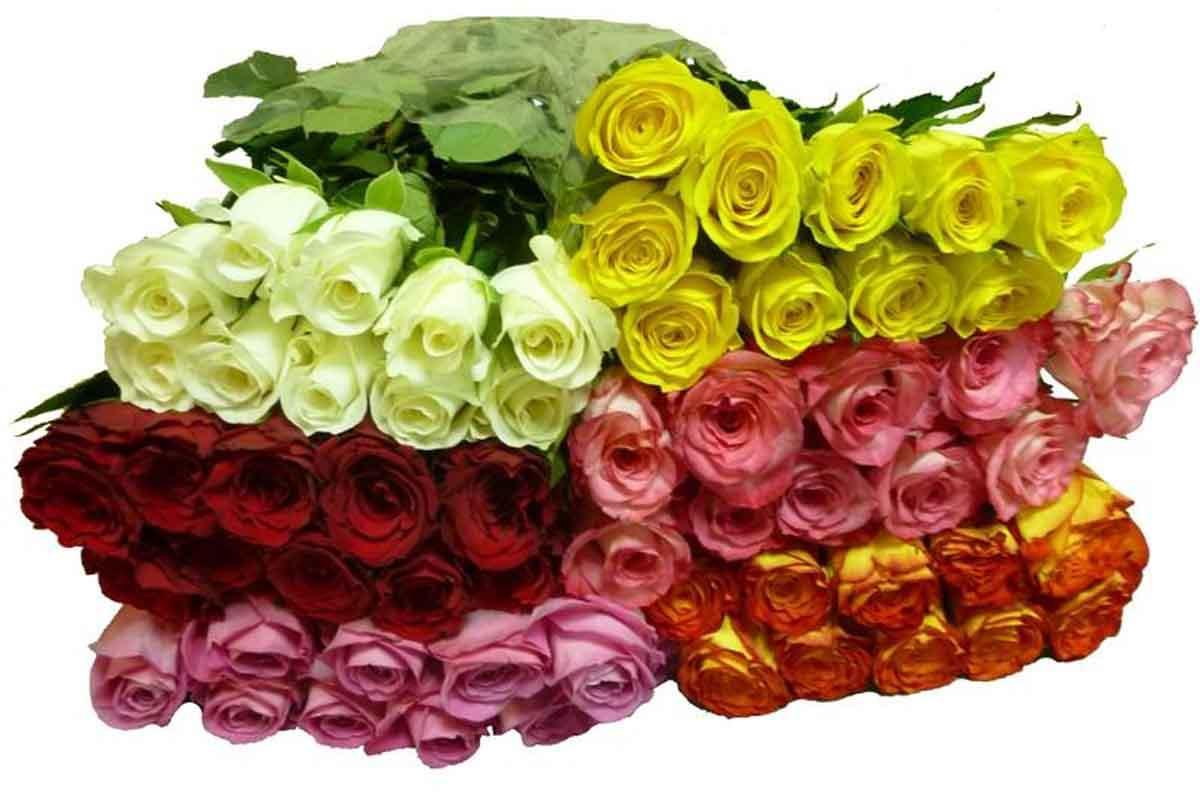 Опт цветы с доставкой в спб